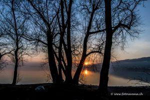 früher Februar-Morgen am Bodensee mit Sonnenaufgang
