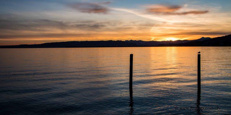 wunderschöne Stimmung mit totaler Stille am Bodensee