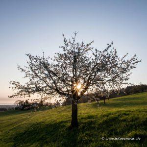 Landschaften Frühling/Sommer