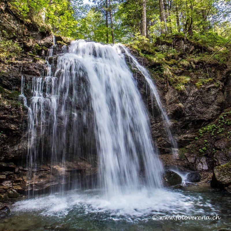 Wasserfall an einem Waldbach nach regenreichen Tagen