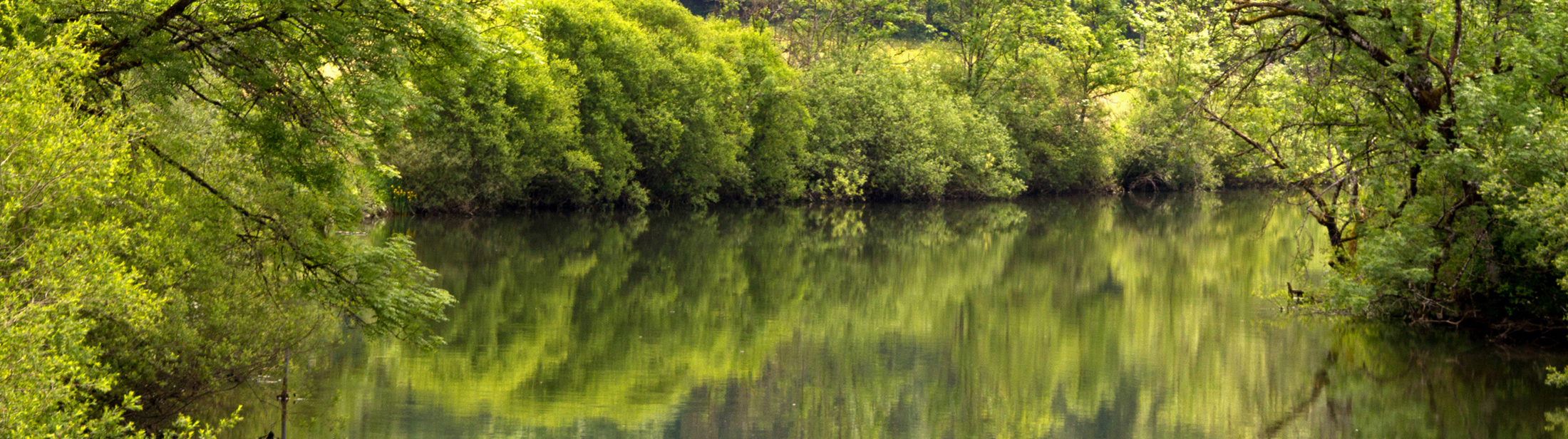 Fotomotiv-Fluss